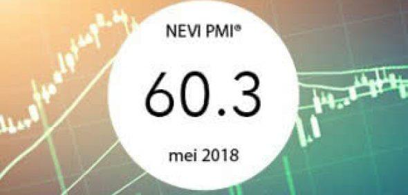 Nevi Pmi 600Px Mei
